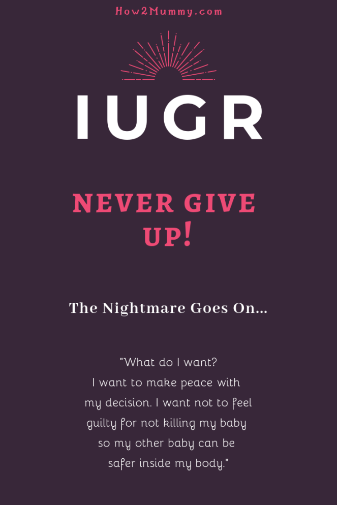 "Have you ever heard about IUGR? A baby born significantly smaller than other, ""normal"" developing babies? In this post, you can read about my story with an IUGR twin. Please read and share! The story continues... #iugr #twins #mcda #iugrawareness #mystory #pregnancy #myiugrstory #mytwinstory"